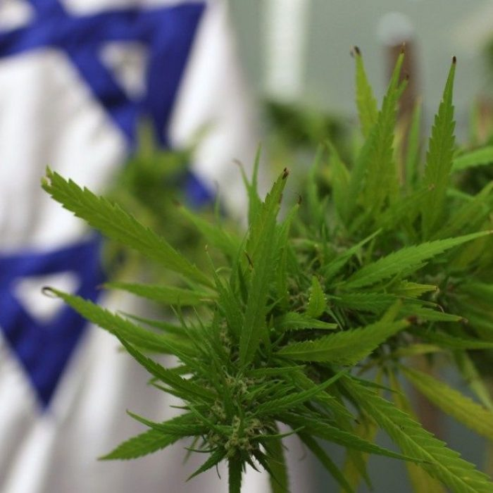 Israeli cabinet approves cannabis exports