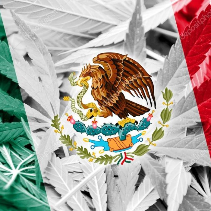Mexico Legalizes Recreational Use